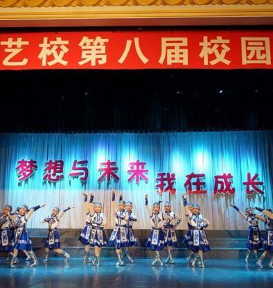 梦想与未来第八届校园艺术节